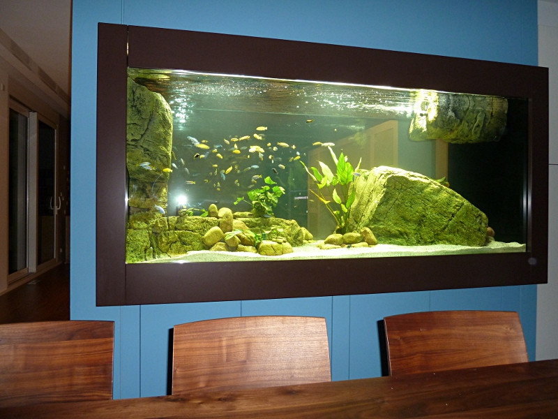 gro es aquarium selber bauen zuhause image idee. Black Bedroom Furniture Sets. Home Design Ideas